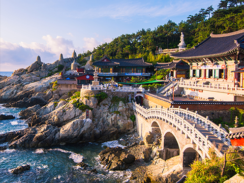 Check out tours and activites from Busan, Korea.