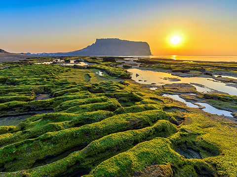 Check out tours and activites from Jeju, Korea.