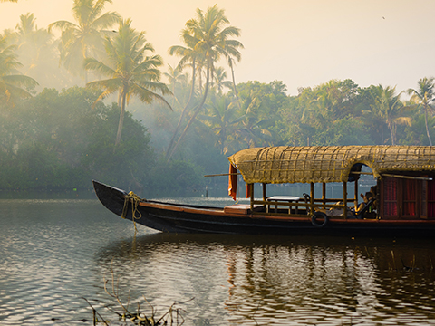 Check out tours and activites from Kochii, India.