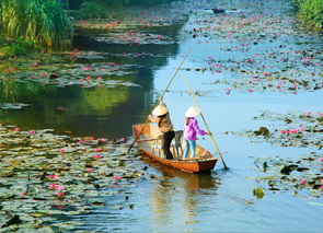 Check out tours and activites from Vietnam Other Areas, Vietnam.