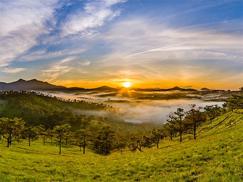 Check out tours and activites from Da Lat, Vietnam.