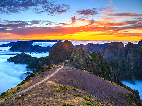 Check out tours and activites from Madeira, Portugal.