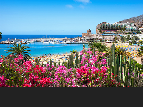 Check out tours and activites from Gran Canaria, Spain.