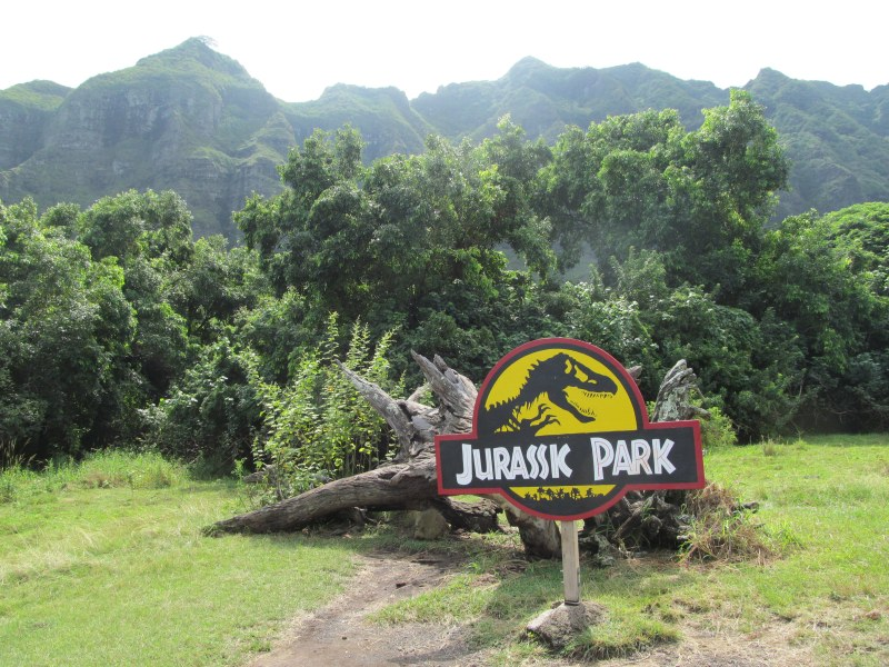 Jurassic Park log at Kualoa Ranch's movie sites tour
