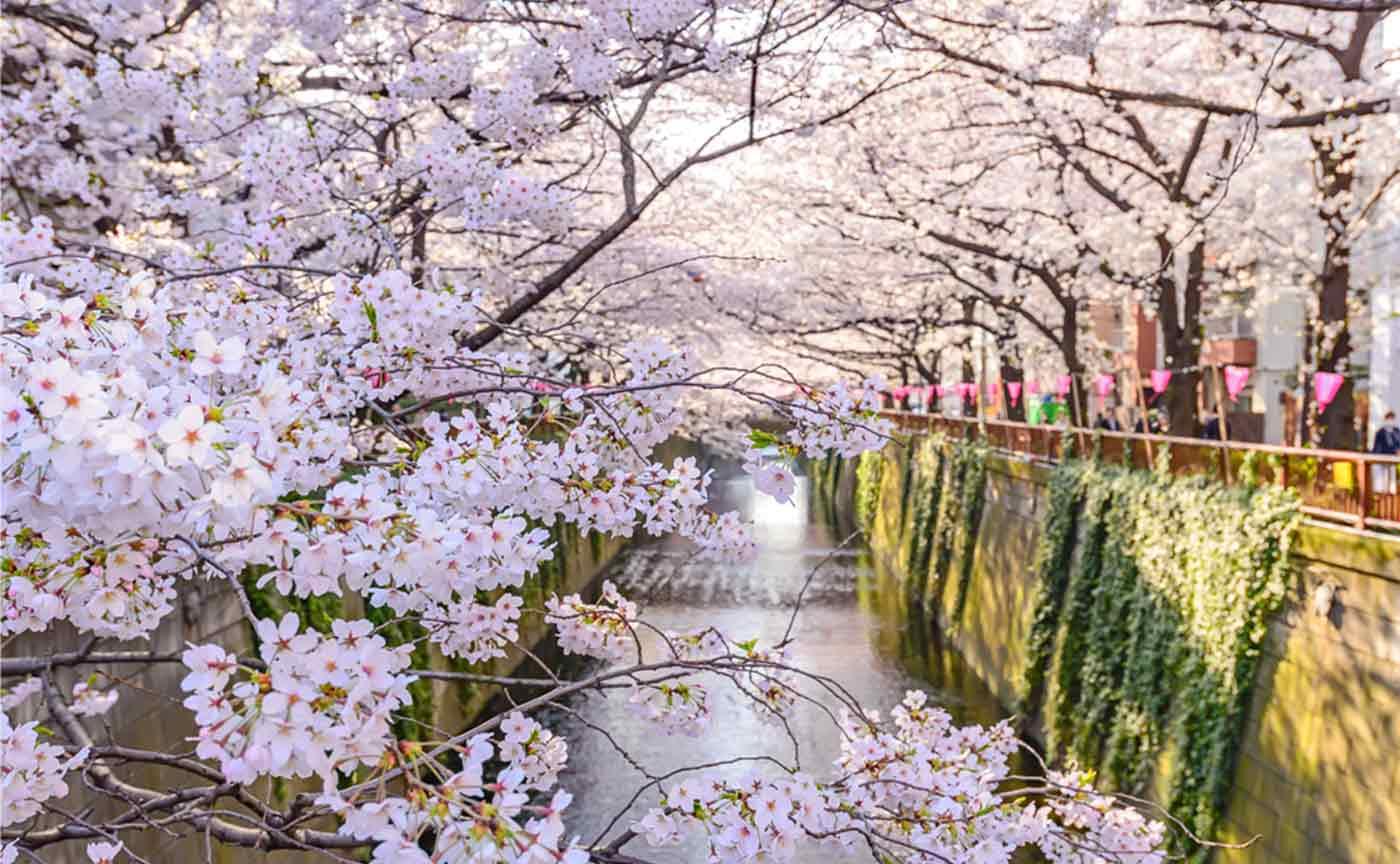 Meguro Riverside